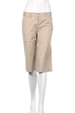 Γυναικείο κοντό παντελόνι BCBG Max Azria, Μέγεθος M, Χρώμα  Μπέζ, 95% βαμβάκι, 3% ελαστάνη, 2% πολυεστέρας, Τιμή 39,20€