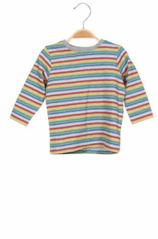 Παιδική μπλούζα Name It, Μέγεθος 3-6m/ 62-68 εκ., Χρώμα Πολύχρωμο, 95% βαμβάκι, 5% ελαστάνη, Τιμή 7,94€