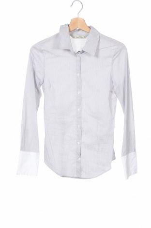 Дамска риза Zara, Размер XS, Цвят Сив, 74% памук, 23% полиамид, 3% еластан, Цена 3,10лв.