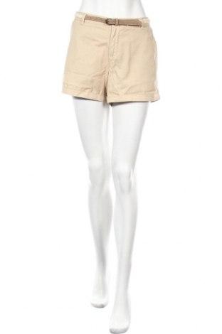 Γυναικείο κοντό παντελόνι Etam, Μέγεθος M, Χρώμα  Μπέζ, 80% βαμβάκι, 20% πολυεστέρας, Τιμή 8,42€