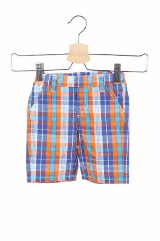 Παιδικό κοντό παντελόνι Grain De Ble, Μέγεθος 9-12m/ 74-80 εκ., Χρώμα Πολύχρωμο, Βαμβάκι, Τιμή 9,40€