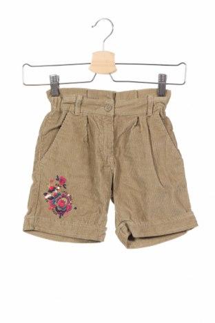 Παιδικό κοντό παντελόνι La Compagnie des Petits, Μέγεθος 7-8y/ 128-134 εκ., Χρώμα  Μπέζ, Βαμβάκι, Τιμή 9,29€