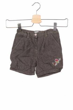 Παιδικό κοντό παντελόνι La Compagnie des Petits, Μέγεθος 18-24m/ 86-98 εκ., Χρώμα Μαύρο, Βαμβάκι, Τιμή 3,90€