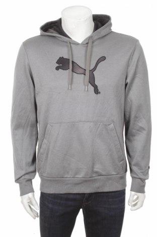 Męska bluza Puma