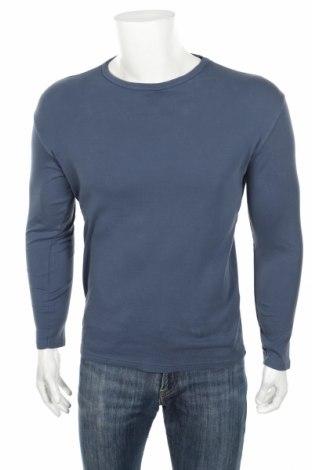 Мъжка блуза Alcott