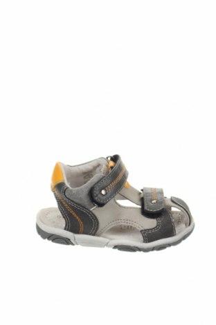 Παιδικά παπούτσια Saxo Blues, Μέγεθος 21, Χρώμα Γκρί, Δερματίνη, Τιμή 15,41€