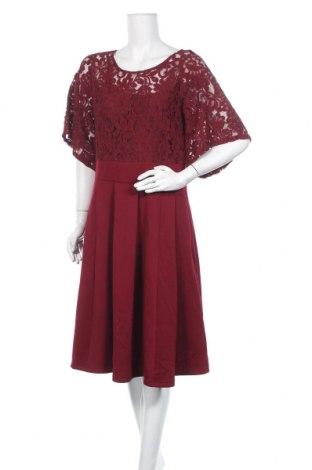 Φόρεμα Molly Bracken, Μέγεθος XL, Χρώμα Κόκκινο, 50% πολυεστέρας, 45% βαμβάκι, 5% ελαστάνη, Τιμή 17,81€