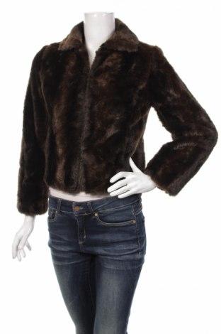 Palton de femei Loft By Ann Taylor