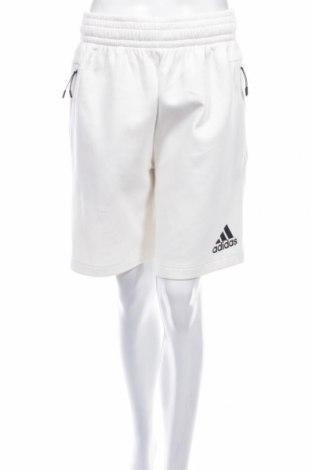 Damskie szorty Adidas