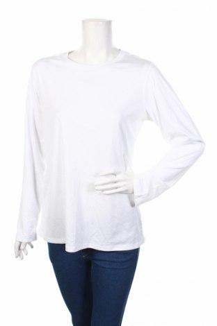 Дамска спортна блуза Hanes