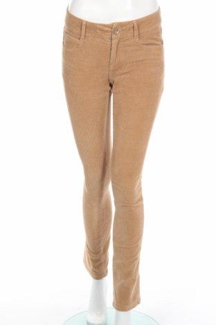 Pantaloni de velvet de femei Max&Co.