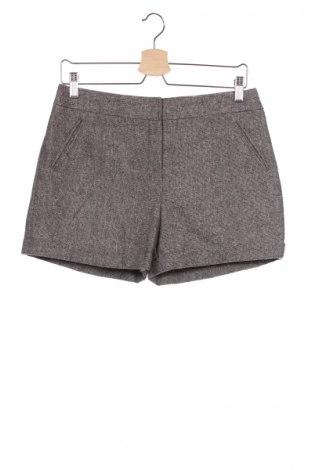 Παιδικό κοντό παντελόνι F&F