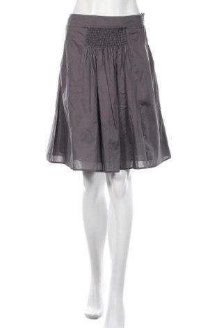 Φούστα Penny Black, Μέγεθος XS, Χρώμα Γκρί, Βαμβάκι, Τιμή 11,15€