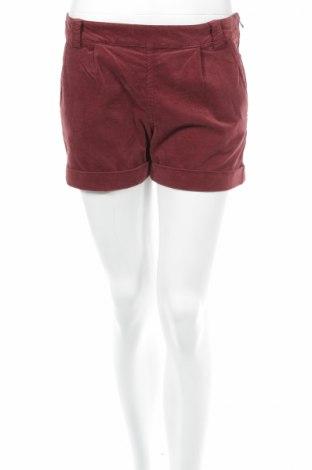 Дамски къс панталон Yerse