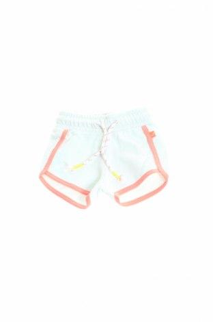 Pantaloni scurți pentru copii Babyface, Mărime 3-6m/ 62-68 cm, Culoare Albastru, Bumbac, Preț 21,09 Lei