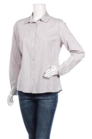 Дамска риза Michele Boyard, Размер L, Цвят Бежов, 66% памук, 31% полиестер, 3% еластан, Цена 14,18лв.