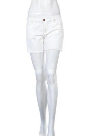 Γυναικείο κοντό παντελόνι SUN68, Μέγεθος L, Χρώμα Λευκό, 90% βαμβάκι, 9% πολυεστέρας, 1% ελαστάνη, Τιμή 10,11€