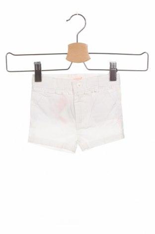 Παιδικό κοντό παντελόνι Gocco, Μέγεθος 3-6m/ 62-68 εκ., Χρώμα Λευκό, 100% βαμβάκι, Τιμή 5,22€