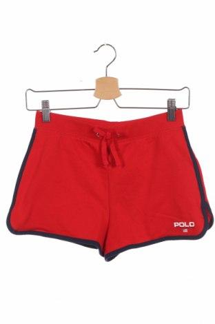 Παιδικό κοντό παντελόνι Polo By Ralph Lauren, Μέγεθος 13-14y/ 164-168 εκ., Χρώμα Κόκκινο, 60% βαμβάκι, 40% πολυεστέρας, Τιμή 15,21€