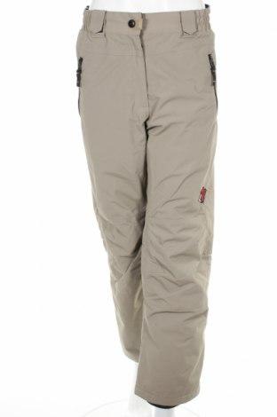 Дамски панталон за зимни спортове Power Zone, Размер M, Цвят Сив, 100% полиамид, Цена 8,28лв.