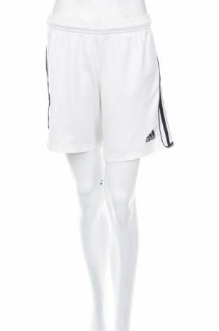 Pantaloni scurți de femei Adidas