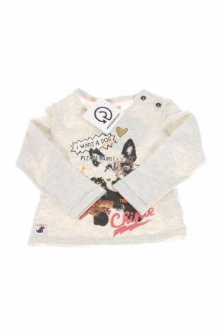 Dziecięca bluzka Chipie