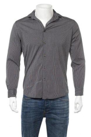 Ανδρικό πουκάμισο Connor, Μέγεθος S, Χρώμα Γκρί, 98% βαμβάκι, 2% ελαστάνη, Τιμή 6,23€
