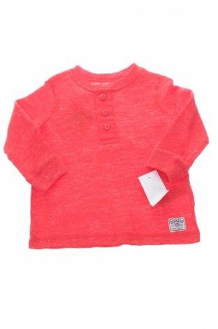 Dziecięca bluzka Oshkosh