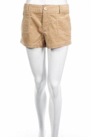 Pantaloni scurți de femei Ocean Pacific