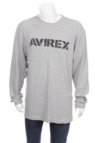 Мъжка блуза Avirex