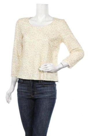 Γυναικεία μπλούζα Armand Ventilo, Μέγεθος M, Χρώμα Εκρού, 94% πολυαμίδη, 6% ελαστάνη, Τιμή 33,17€