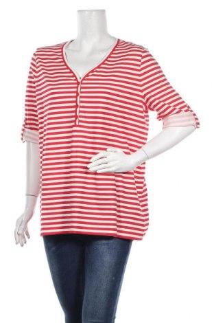 Γυναικεία μπλούζα Samoon, Μέγεθος L, Χρώμα Κόκκινο, Βαμβάκι, Τιμή 21,65€