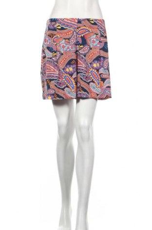 Γυναικείο κοντό παντελόνι Dorothy Perkins, Μέγεθος M, Χρώμα Πολύχρωμο, Πολυεστέρας, Τιμή 14,07€