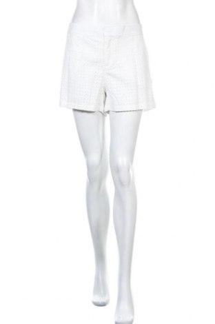 Дамски къс панталон Jake*s, Размер XL, Цвят Бял, 100% памук, Цена 22,05лв.