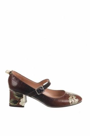 Γυναικεία παπούτσια TWINSET, Μέγεθος 37, Χρώμα Καφέ, Γνήσιο δέρμα, Τιμή 77,44€
