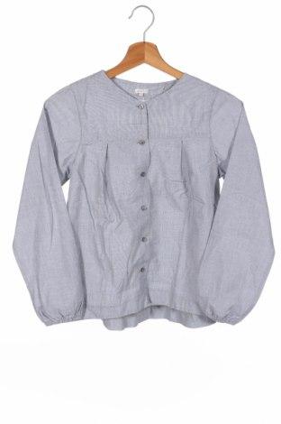 Παιδικό πουκάμισο Gocco, Μέγεθος 10-11y/ 146-152 εκ., Χρώμα Γκρί, Βαμβάκι, Τιμή 6,32€