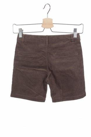 Παιδικό κοντό παντελόνι Gocco, Μέγεθος 5-6y/ 116-122 εκ., Χρώμα  Μπέζ, 70% βαμβάκι, 28% πολυεστέρας, 2% ελαστάνη, Τιμή 11,34€