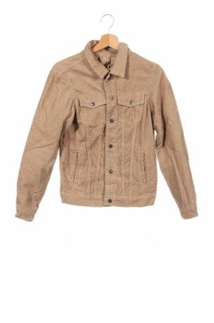 Ανδρικό μπουφάν Pull&Bear, Μέγεθος XS, Χρώμα Καφέ, Βαμβάκι, Τιμή 17,79€