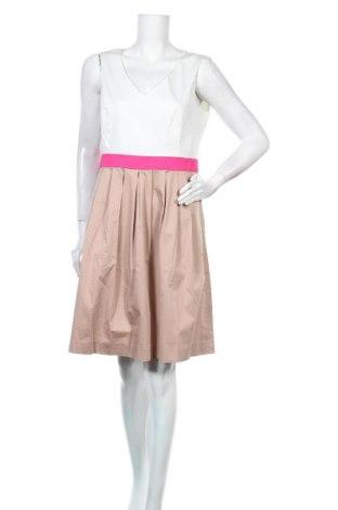 Φόρεμα Jake*s, Μέγεθος L, Χρώμα Πολύχρωμο, 96% βαμβάκι, 4% ελαστάνη, Τιμή 16,70€
