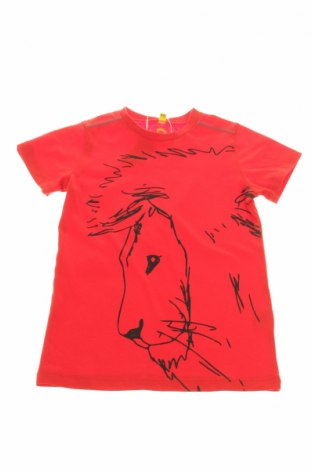 Dziecięcy T-shirt Igloo
