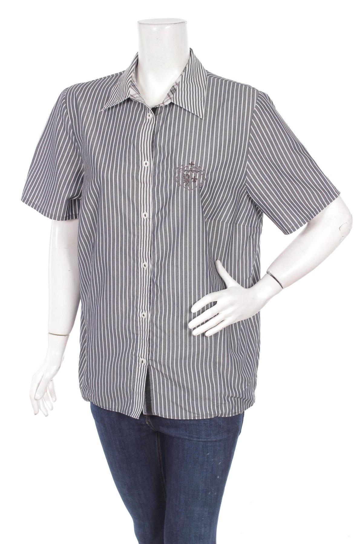 Γυναικείο πουκάμισο, Μέγεθος L, Χρώμα Γκρί, Τιμή 9,28€