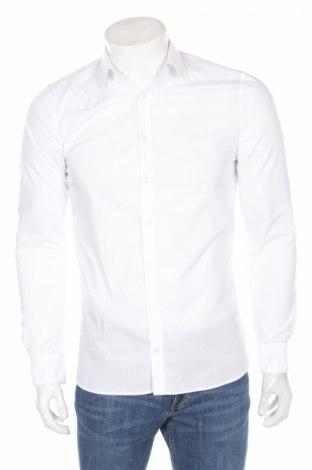 Pánska košeľa  Olymp