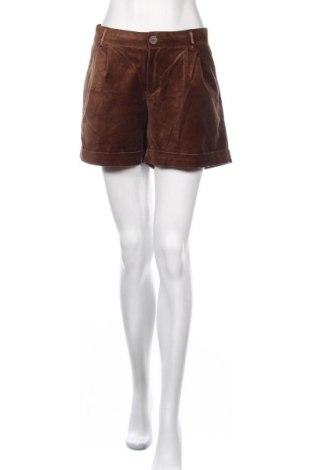 Γυναικείο κοντό παντελόνι Noa Noa, Μέγεθος L, Χρώμα Καφέ, 97% βαμβάκι, 3% ελαστάνη, Τιμή 18,70€