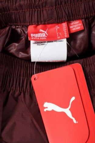 Παιδική κάτω φόρμα PUMA, Μέγεθος 8-9y/ 134-140 εκ., Χρώμα Κόκκινο, Πολυαμίδη, Τιμή 7,83€